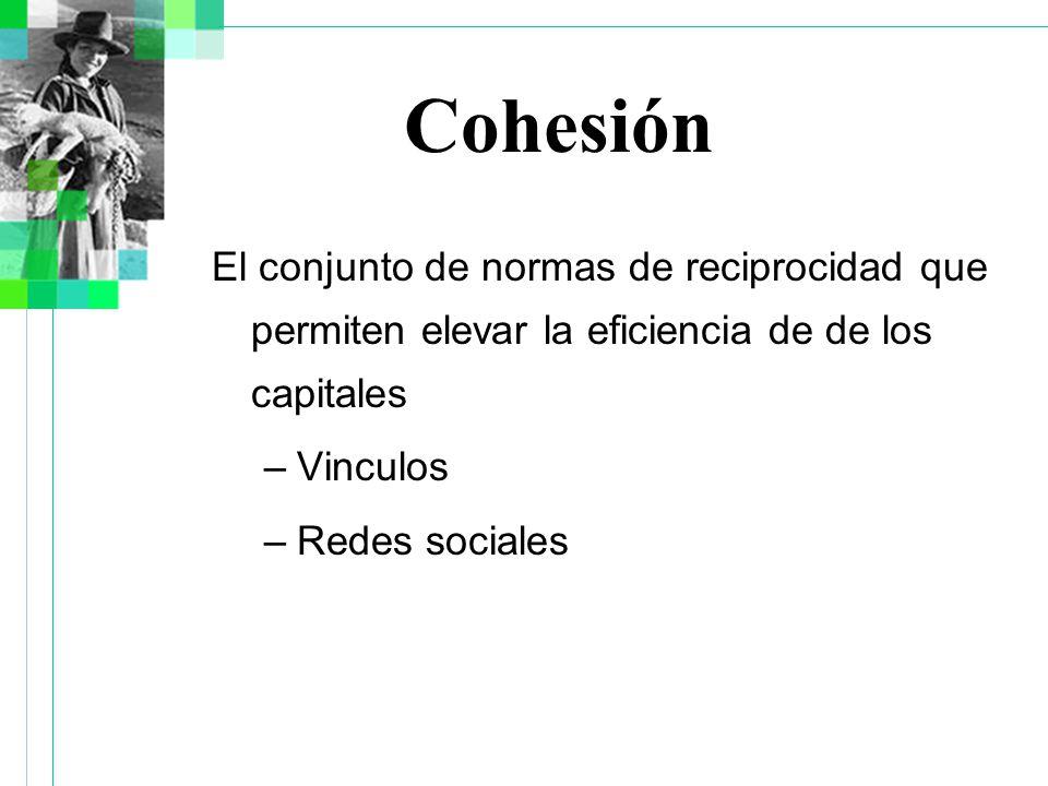 Cohesión El conjunto de normas de reciprocidad que permiten elevar la eficiencia de de los capitales –Vinculos –Redes sociales