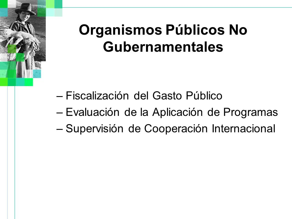 Organismos Públicos No Gubernamentales –Fiscalización del Gasto Público –Evaluación de la Aplicación de Programas –Supervisión de Cooperación Internacional
