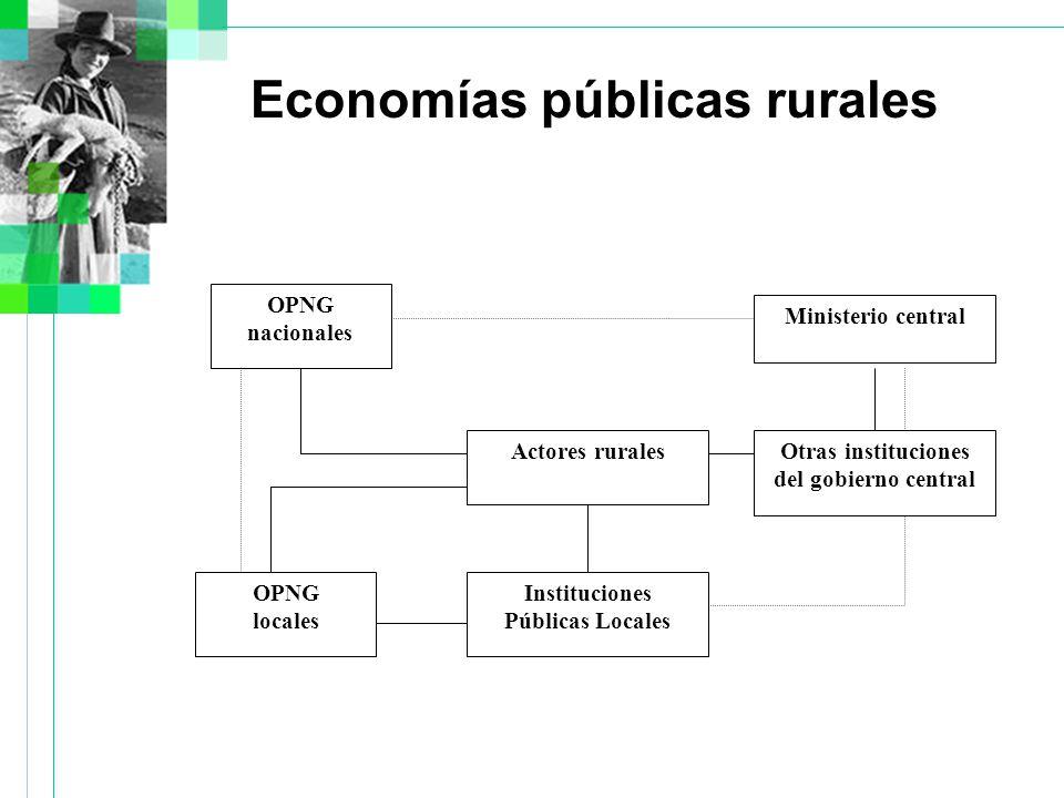 Economías públicas rurales Actores rurales OPNG nacionales Instituciones Públicas Locales OPNG locales Ministerio central Otras instituciones del gobierno central