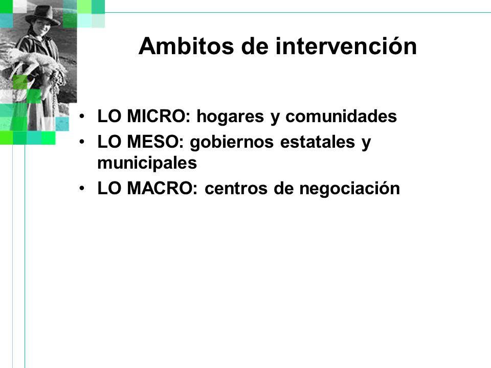 Ambitos de intervención LO MICRO: hogares y comunidades LO MESO: gobiernos estatales y municipales LO MACRO: centros de negociación