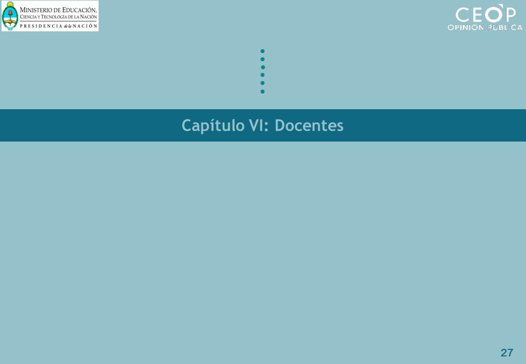 27 Capítulo VI: Docentes