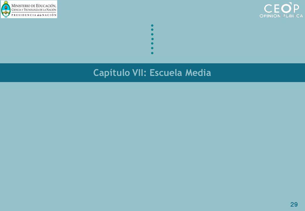 29 Capítulo VII: Escuela Media