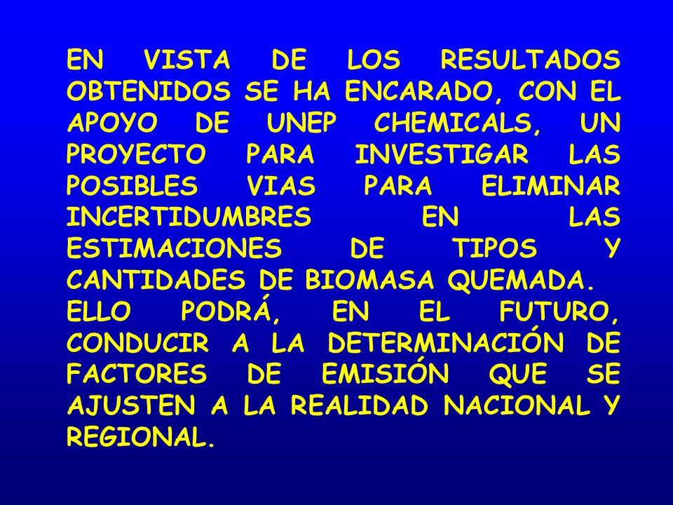 EN VISTA DE LOS RESULTADOS OBTENIDOS SE HA ENCARADO, CON EL APOYO DE UNEP CHEMICALS, UN PROYECTO PARA INVESTIGAR LAS POSIBLES VIAS PARA ELIMINAR INCERTIDUMBRES EN LAS ESTIMACIONES DE TIPOS Y CANTIDADES DE BIOMASA QUEMADA.