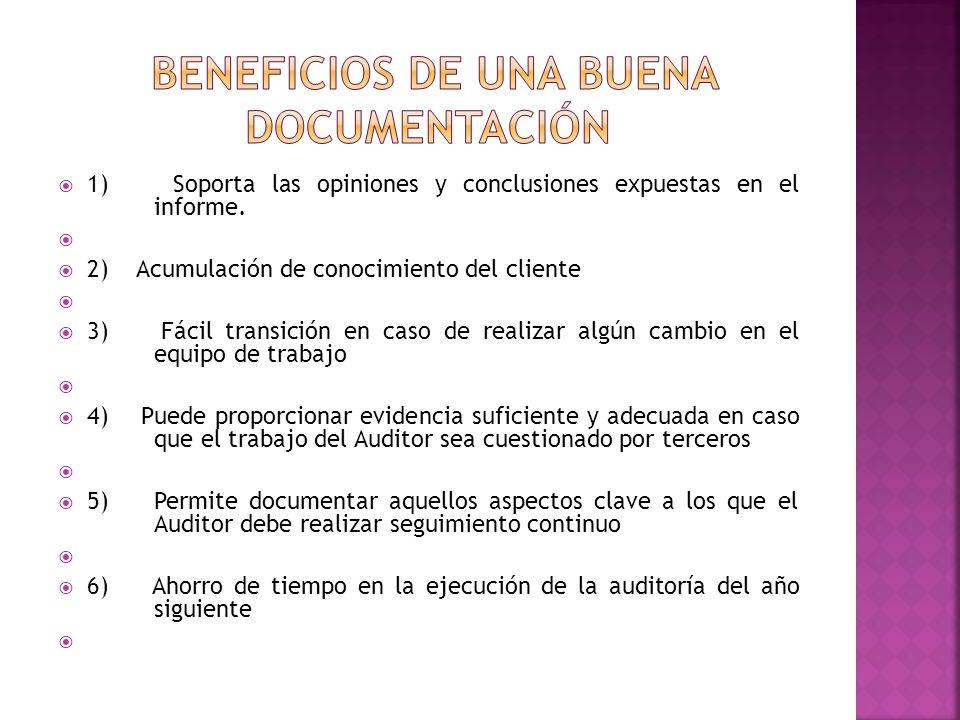  1) Soporta las opiniones y conclusiones expuestas en el informe.