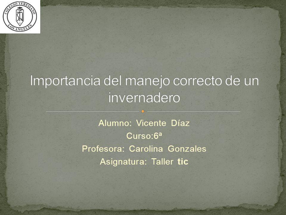 Alumno: Vicente Díaz Curso:6ª Profesora: Carolina Gonzales Asignatura: Taller tic