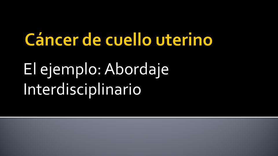 El ejemplo: Abordaje Interdisciplinario