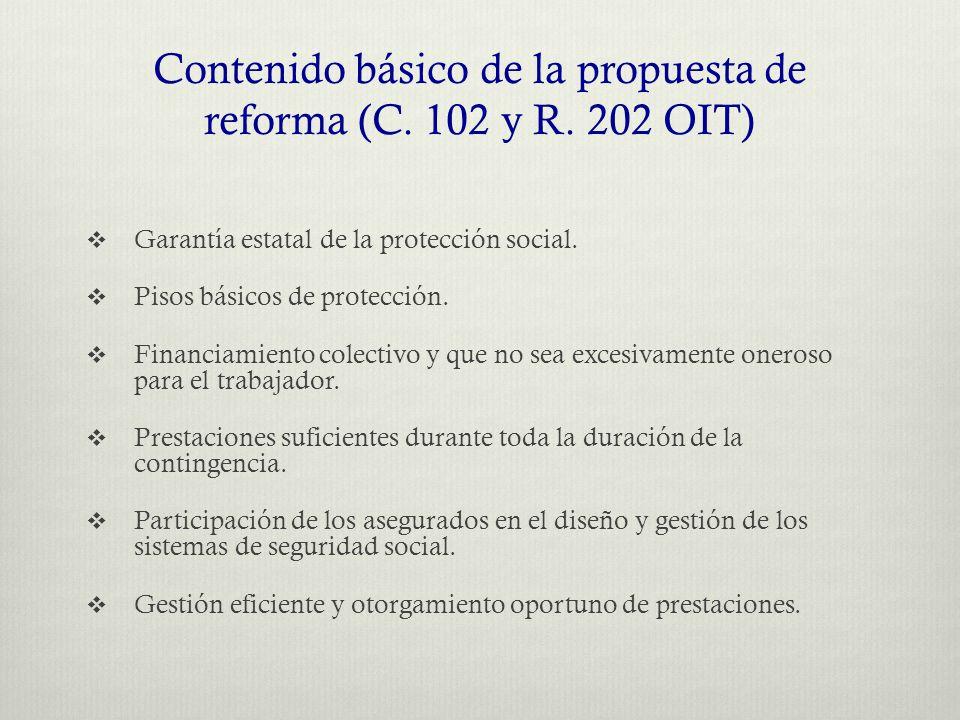 Contenido básico de la propuesta de reforma (C. 102 y R.