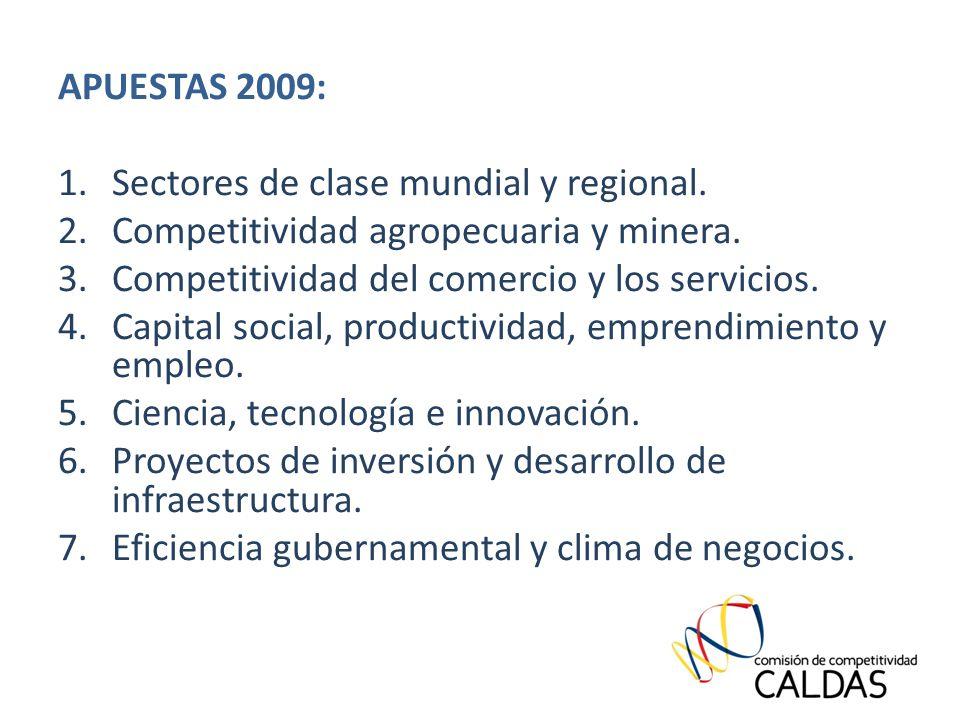 APUESTAS 2009: 1.Sectores de clase mundial y regional.