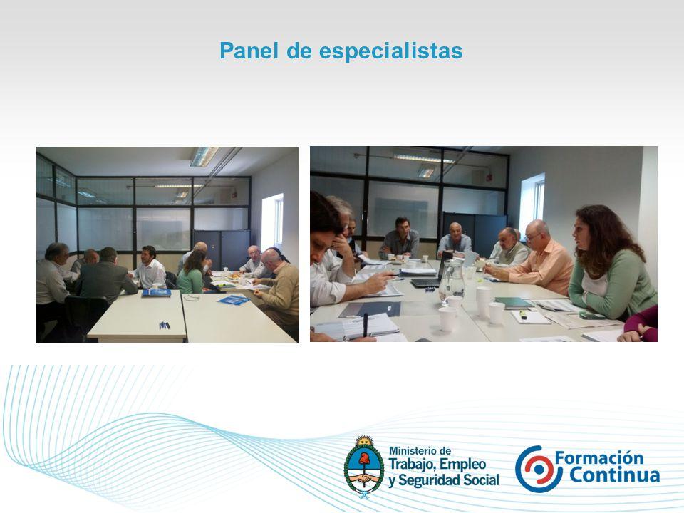 Panel de especialistas