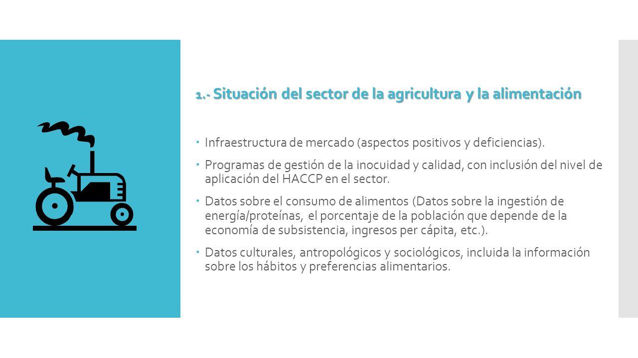1.- Situación del sector de la agricultura y la alimentación  Infraestructura de mercado (aspectos positivos y deficiencias).