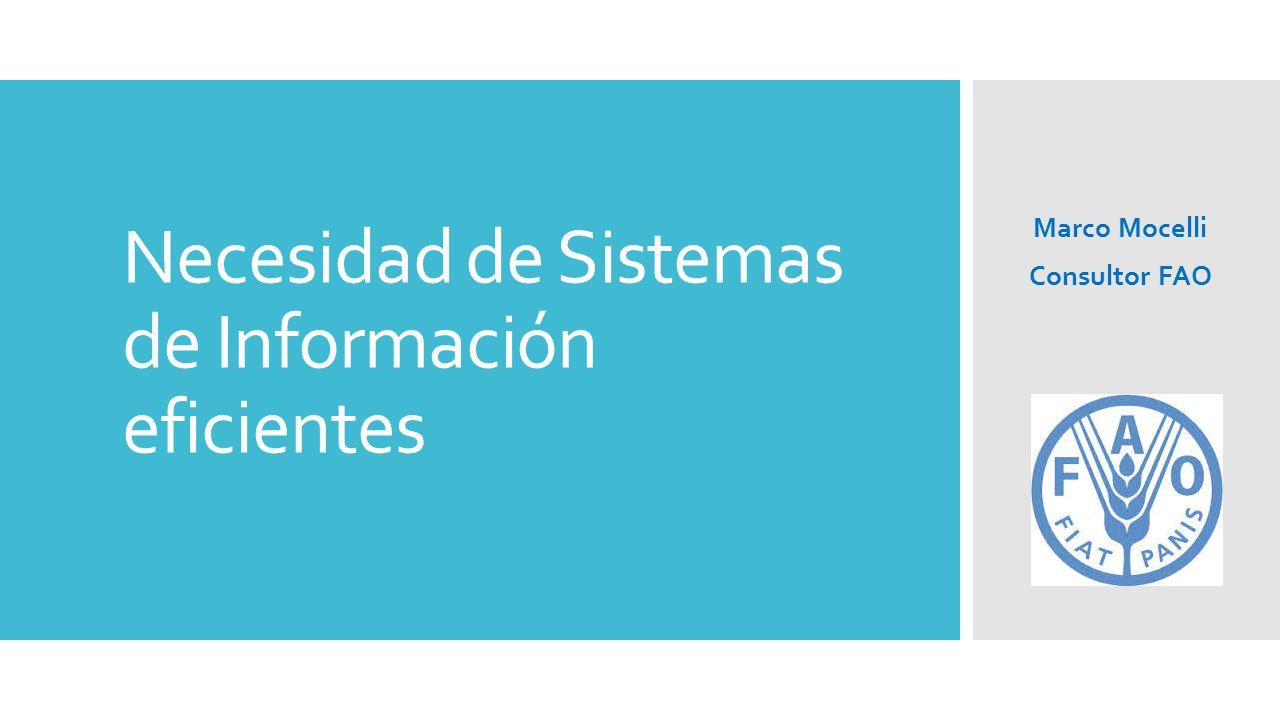 Necesidad de Sistemas de Información eficientes Marco Mocelli Consultor FAO