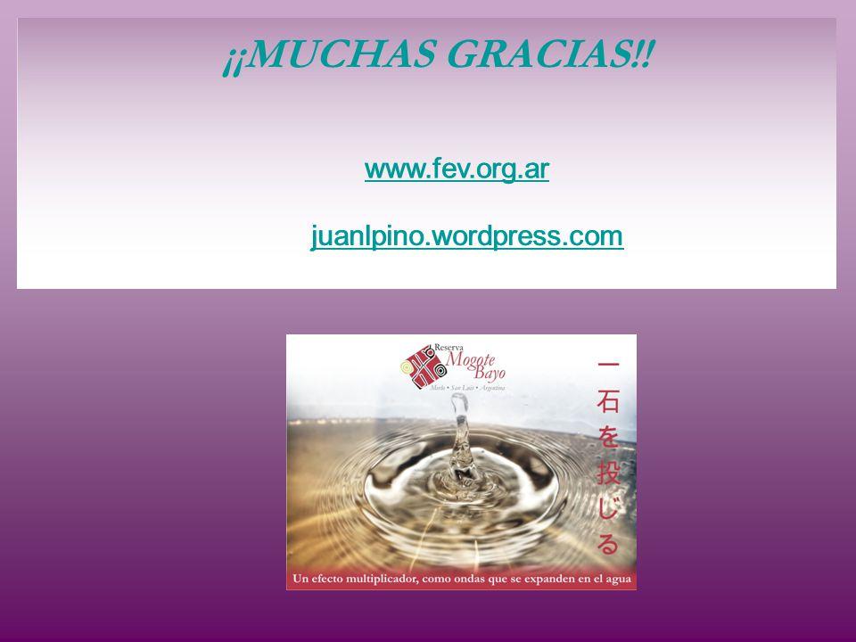 ¡¡MUCHAS GRACIAS!! www.fev.org.ar juanlpino.wordpress.com www.fev.org.ar juanlpino.wordpress.com