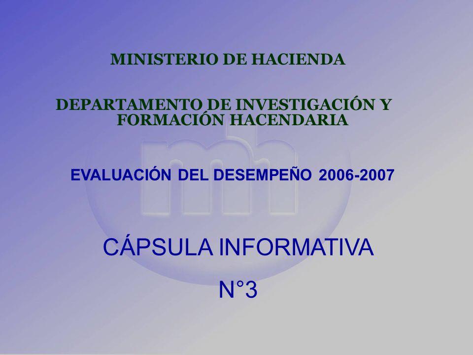 MINISTERIO DE HACIENDA DEPARTAMENTO DE INVESTIGACIÓN Y FORMACIÓN HACENDARIA EVALUACIÓN DEL DESEMPEÑO 2006-2007 CÁPSULA INFORMATIVA N°3