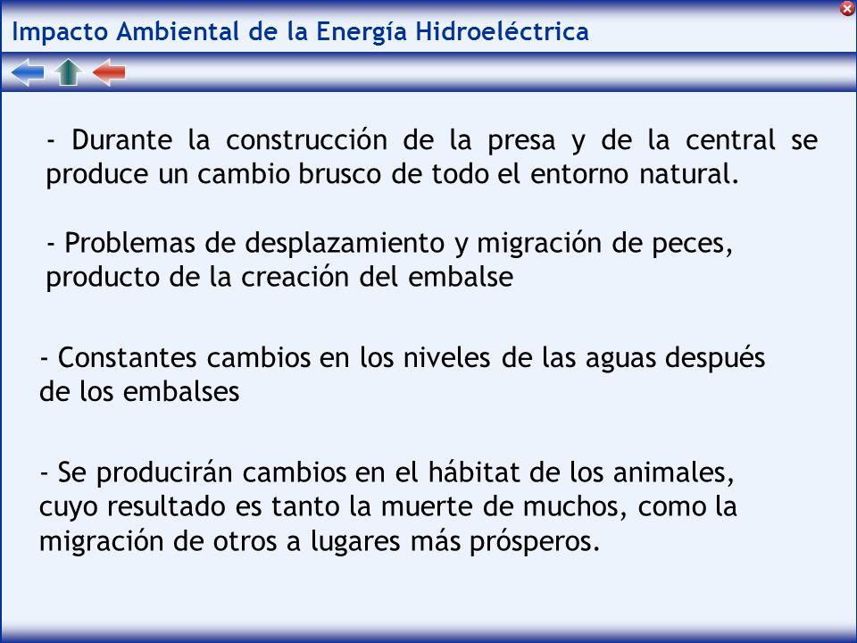 Impacto Ambiental de la Energía Hidroeléctrica - Durante la construcción de la presa y de la central se produce un cambio brusco de todo el entorno natural.