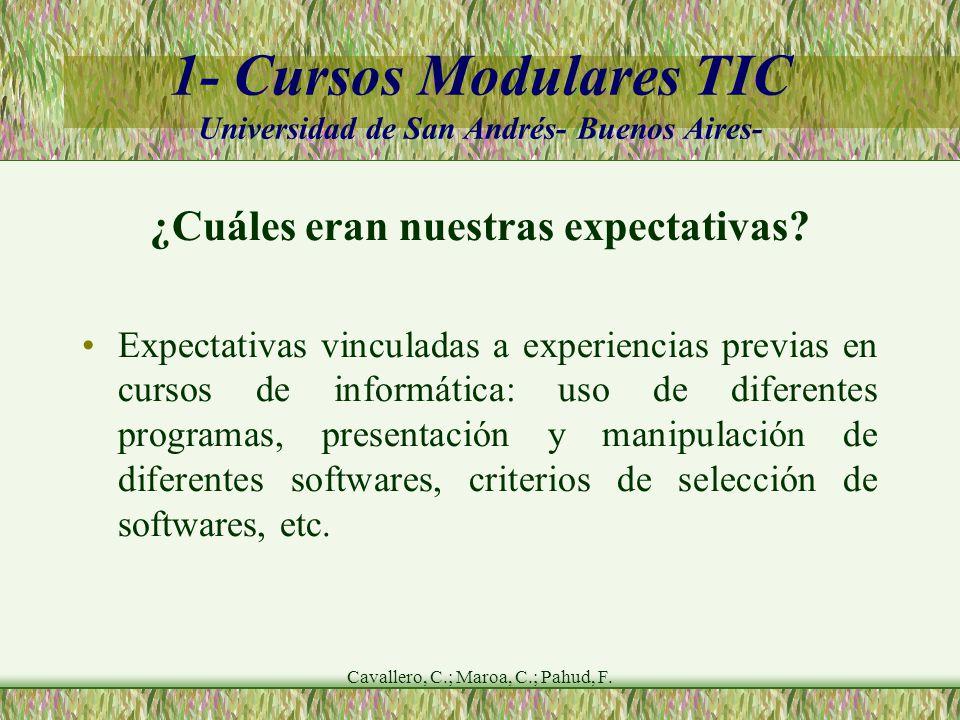 Cavallero, C.; Maroa, C.; Pahud, F.