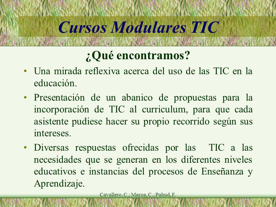Cavallero, C.; Maroa, C.; Pahud, F. Cursos Modulares TIC ¿Qué encontramos.