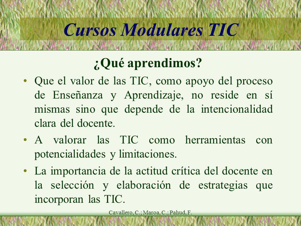 Cavallero, C.; Maroa, C.; Pahud, F. Cursos Modulares TIC ¿Qué aprendimos.
