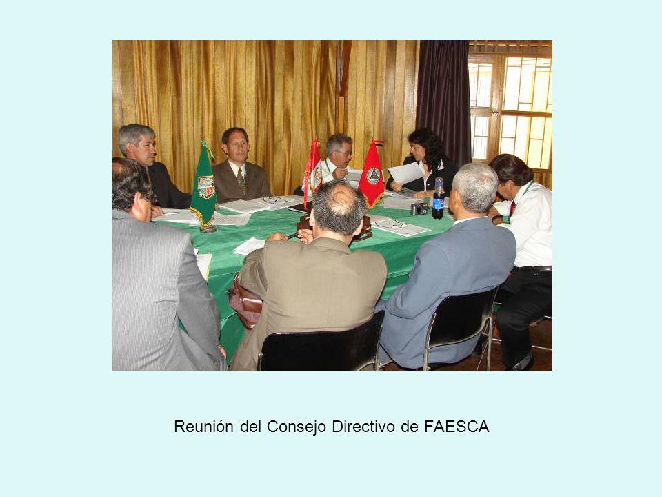 Reunión del Consejo Directivo de FAESCA