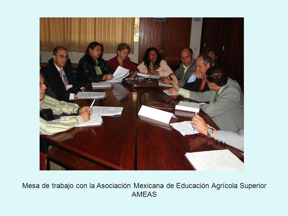 Mesa de trabajo con la Asociación Mexicana de Educación Agrícola Superior AMEAS