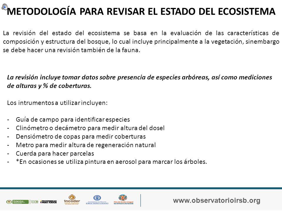 IMPORTANCIA, USO Y FUNCIÓN ECOLÓGICA DE LOS MANGLARES www.observatorioirsb.org Haga clic en la imagen para acceder al video