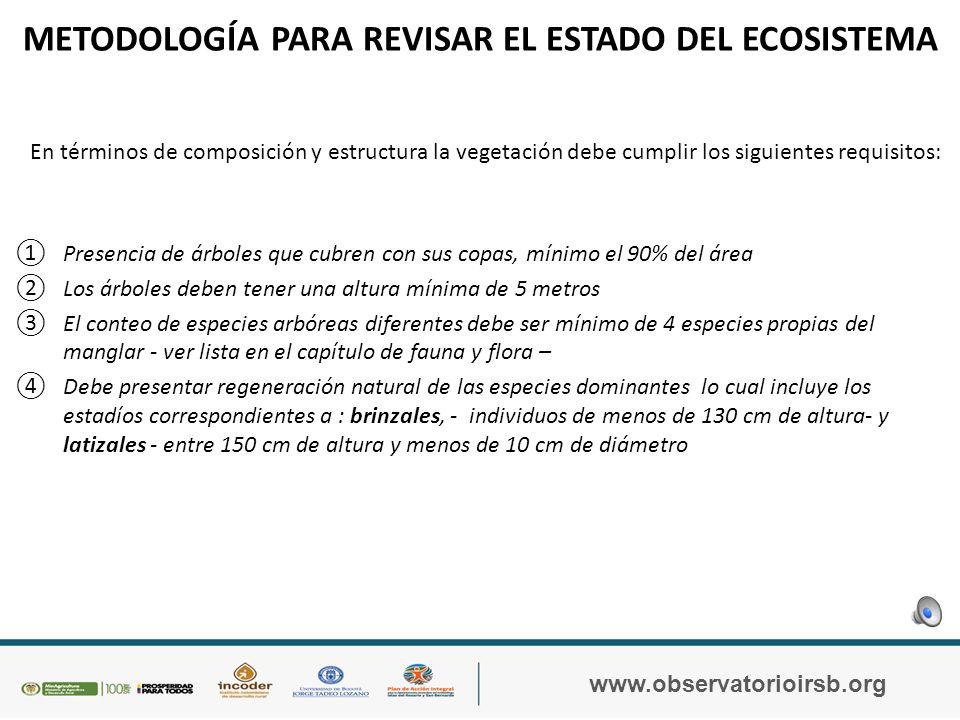 METODOLOGÍA PARA REVISAR EL ESTADO DEL ECOSISTEMA La revisión del estado del ecosistema se basa en la evaluación de las características de composición y estructura del bosque, lo cual incluye principalmente a la vegetación, sinembargo se debe hacer una revisión también de la fauna.