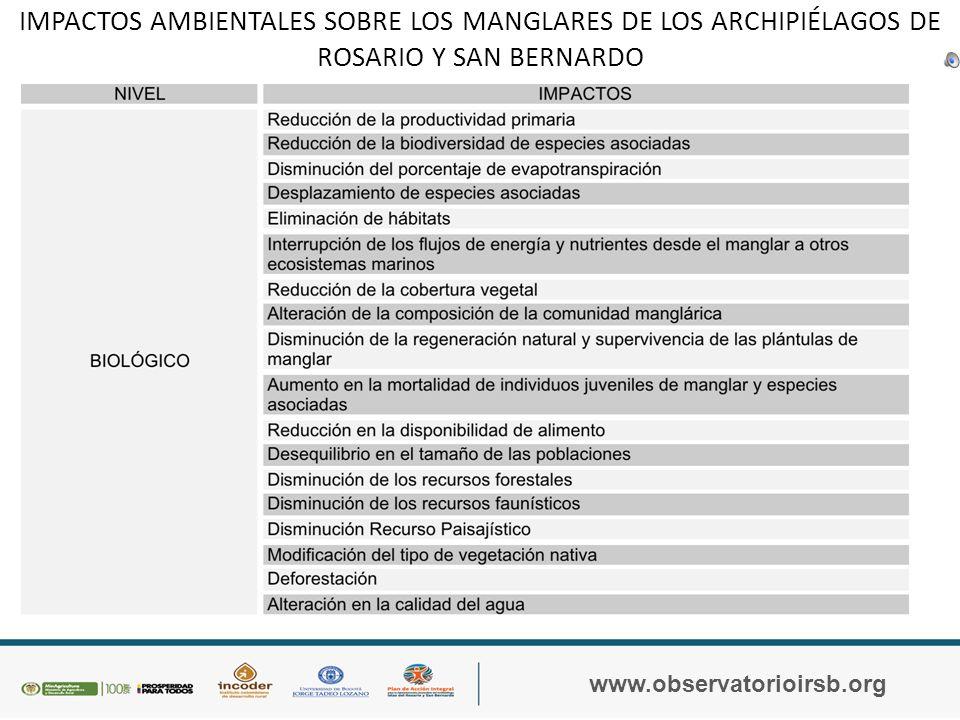 TENSORES DE LOS MANGLARES www.observatorioirsb.org