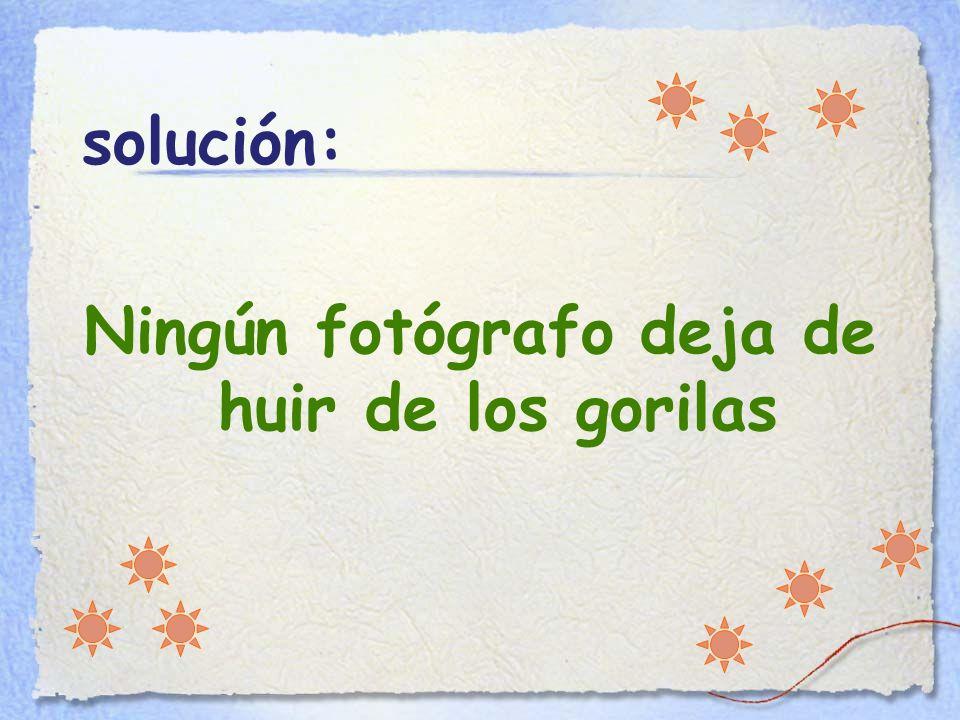 solución: Ningún fotógrafo deja de huir de los gorilas