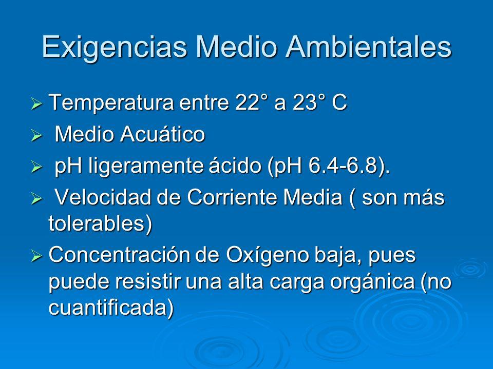 Exigencias Medio Ambientales  Temperatura entre 22° a 23° C  Medio Acuático  pH ligeramente ácido (pH 6.4-6.8).