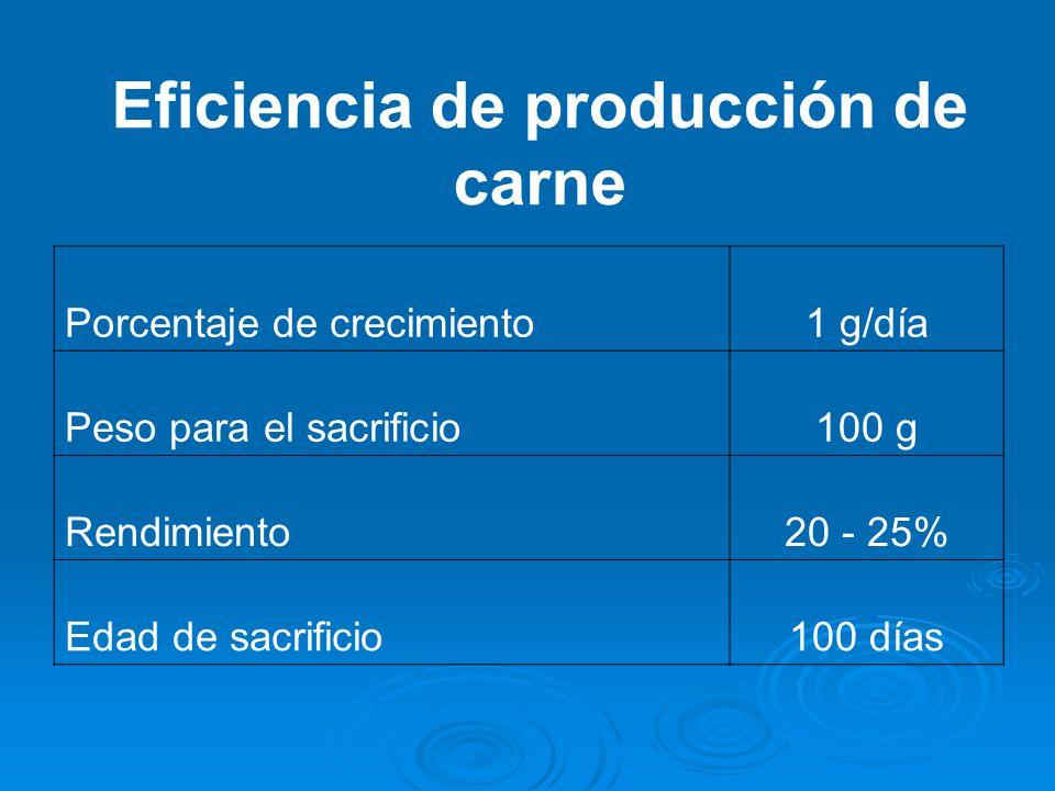 Eficiencia de producción de carne Porcentaje de crecimiento1 g/día Peso para el sacrificio100 g Rendimiento20 - 25% Edad de sacrificio100 días