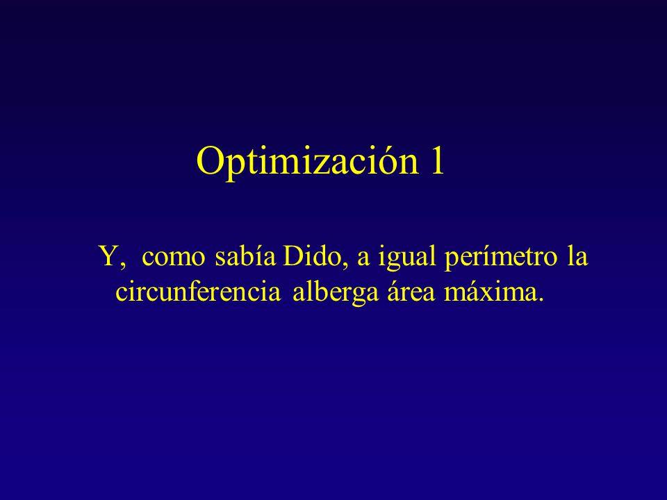 Optimización 1 Y, como sabía Dido, a igual perímetro la circunferencia alberga área máxima.