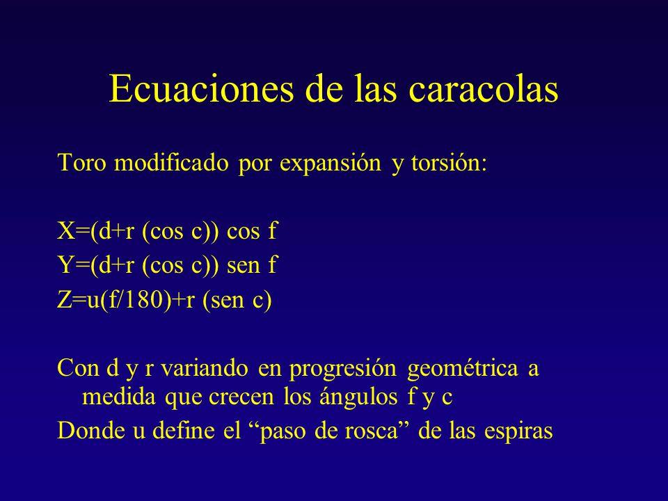 Ecuaciones de las caracolas Toro modificado por expansión y torsión: X=(d+r (cos c)) cos f Y=(d+r (cos c)) sen f Z=u(f/180)+r (sen c) Con d y r variando en progresión geométrica a medida que crecen los ángulos f y c Donde u define el paso de rosca de las espiras