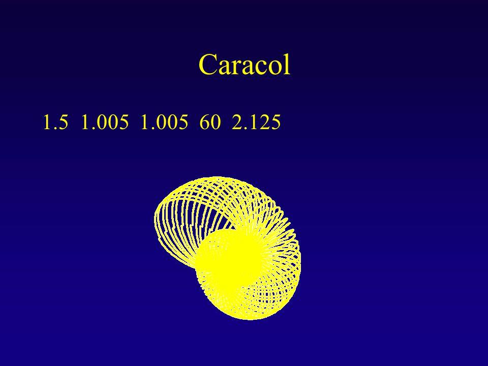 Caracol 1.5 1.005 1.005 60 2.125