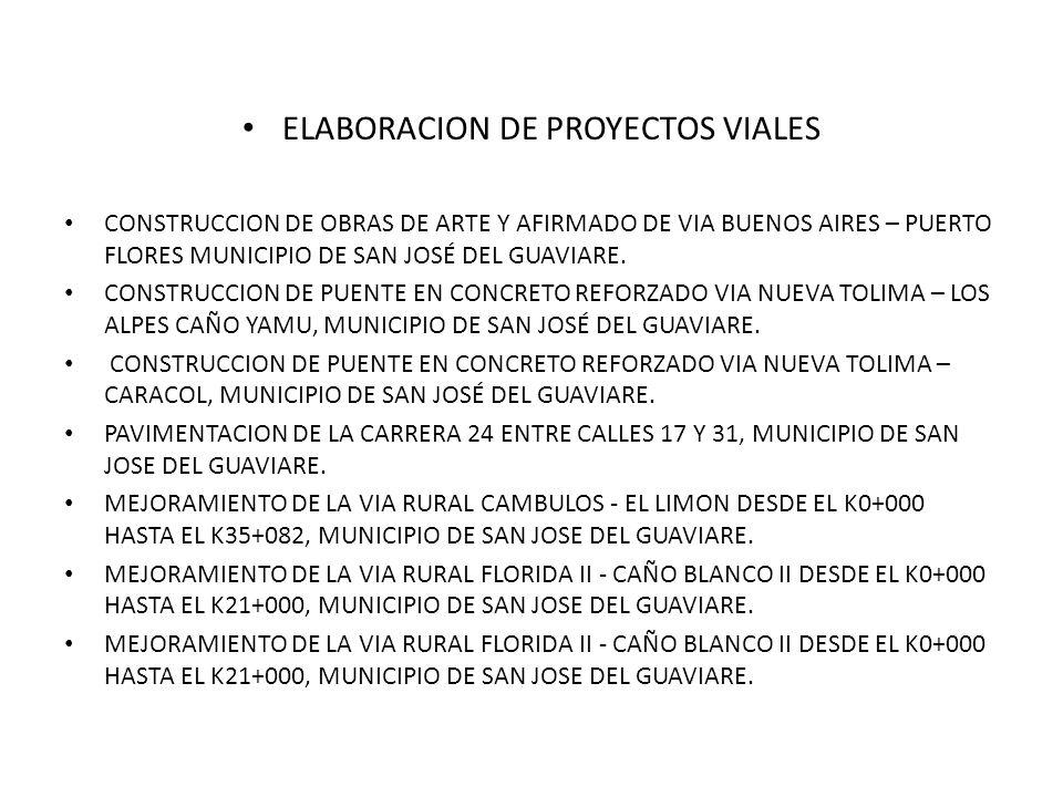 ELABORACION DE PROYECTOS VIALES CONSTRUCCION DE OBRAS DE ARTE Y AFIRMADO DE VIA BUENOS AIRES – PUERTO FLORES MUNICIPIO DE SAN JOSÉ DEL GUAVIARE.