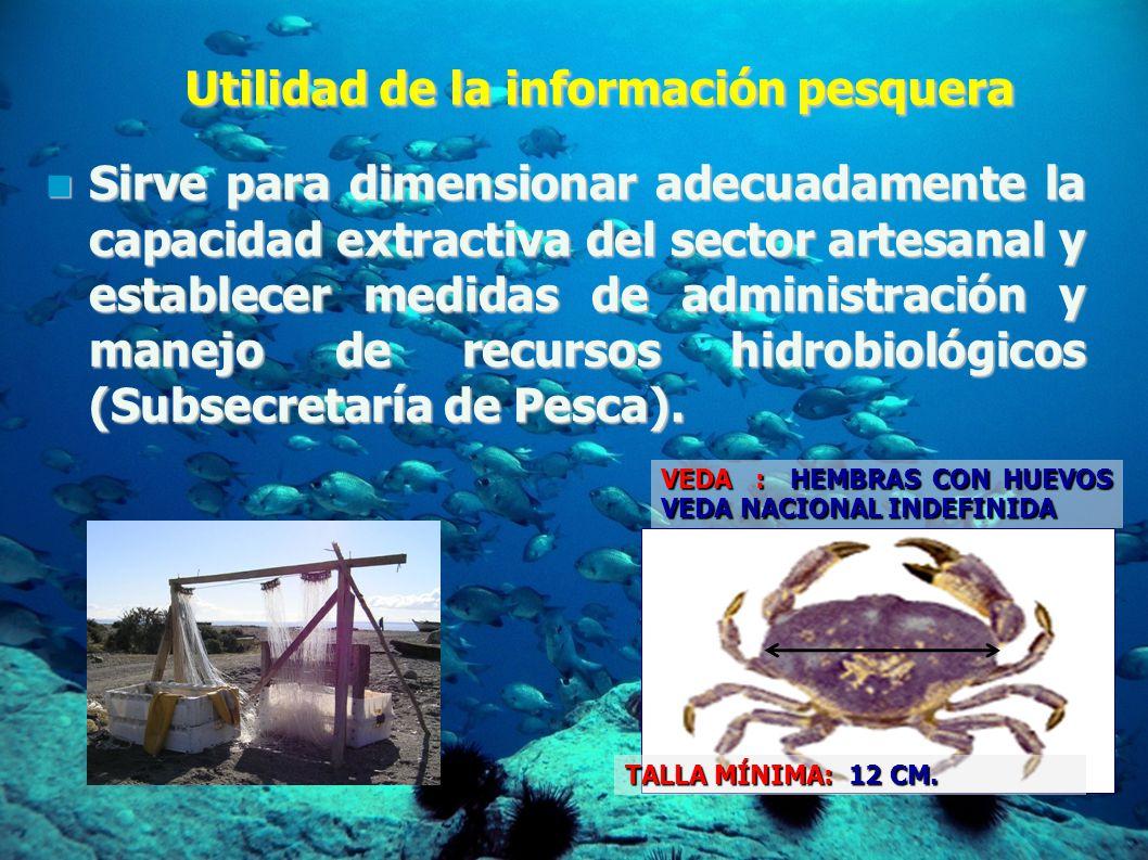 Utilidad de la información pesquera Sirve para dimensionar adecuadamente la capacidad extractiva del sector artesanal y establecer medidas de administración y manejo de recursos hidrobiológicos (Subsecretaría de Pesca).