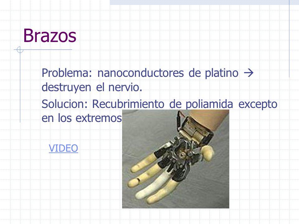 Brazos Problema: nanoconductores de platino  destruyen el nervio.