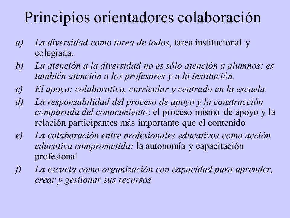 Principios orientadores colaboración a)La diversidad como tarea de todos, tarea institucional y colegiada.