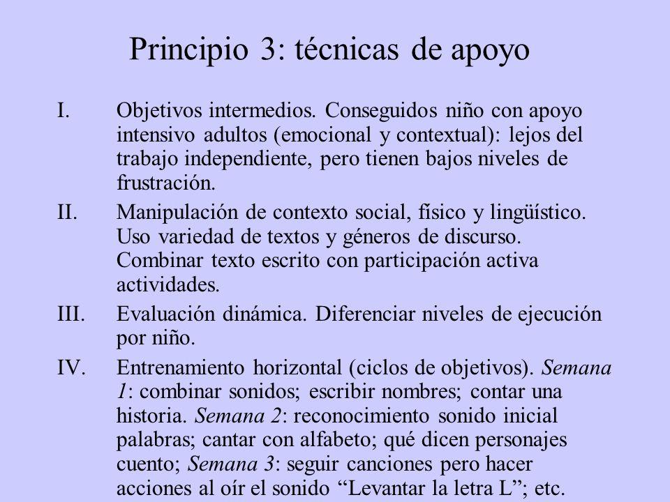 Principio 3: técnicas de apoyo I.Objetivos intermedios.