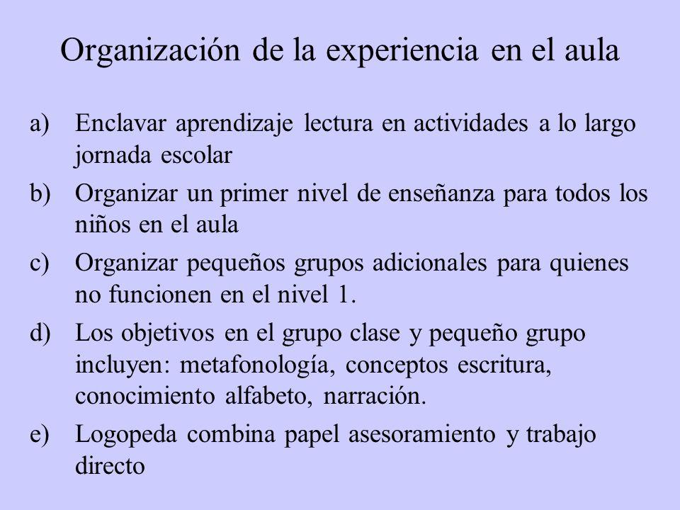 Organización de la experiencia en el aula a)Enclavar aprendizaje lectura en actividades a lo largo jornada escolar b)Organizar un primer nivel de enseñanza para todos los niños en el aula c)Organizar pequeños grupos adicionales para quienes no funcionen en el nivel 1.