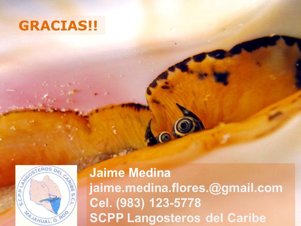 Jaime Medina jaime.medina.flores.@gmail.com Cel.