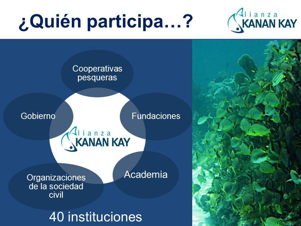 ¿Quién participa… 40 instituciones