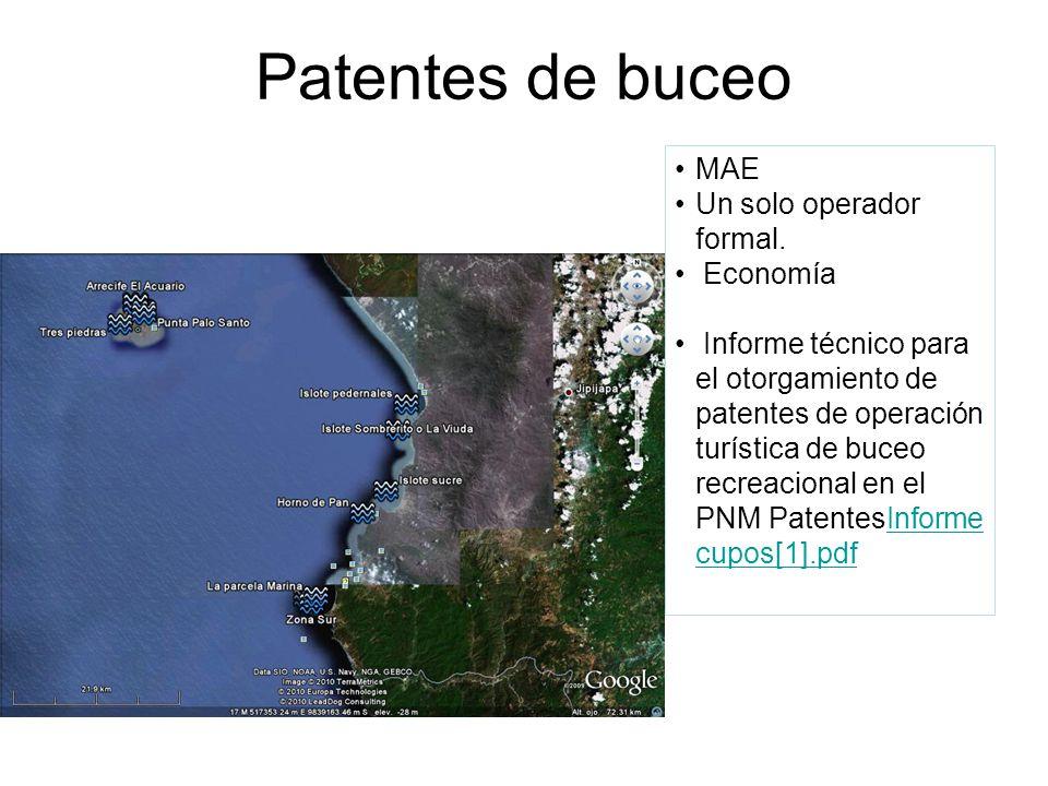 Patentes de buceo MAE Un solo operador formal.