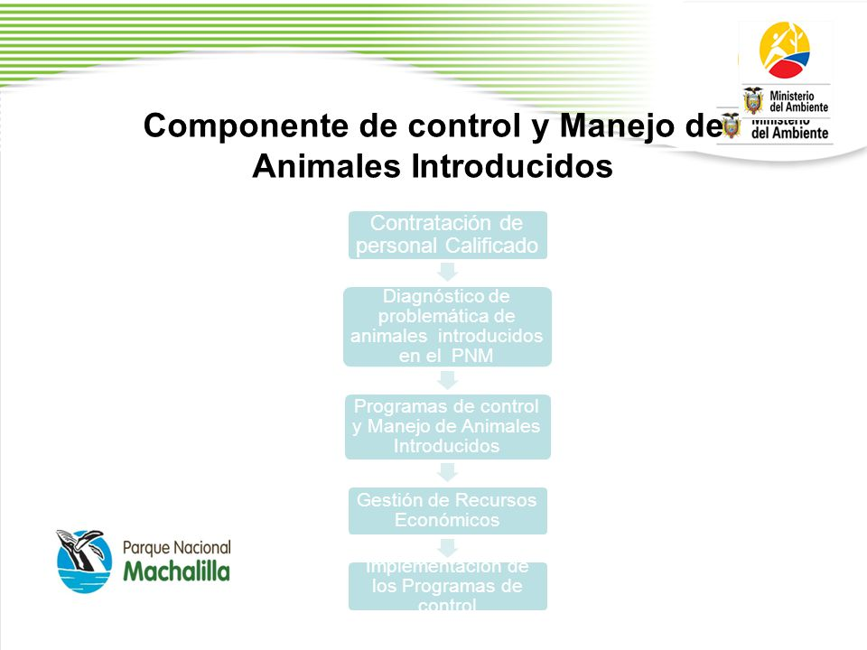 Componente de control y Manejo de Animales Introducidos Contratación de personal Calificado Diagnóstico de problemática de animales introducidos en el PNM Programas de control y Manejo de Animales Introducidos Gestión de Recursos Económicos Implementación de los Programas de control