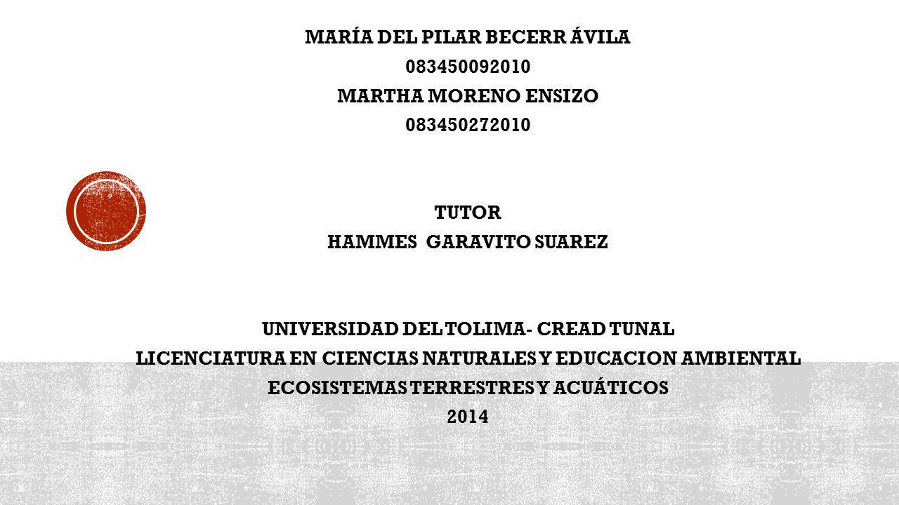 MARÍA DEL PILAR BECERR ÁVILA 083450092010 MARTHA MORENO ENSIZO 083450272010 TUTOR HAMMES GARAVITO SUAREZ UNIVERSIDAD DEL TOLIMA- CREAD TUNAL LICENCIATURA EN CIENCIAS NATURALES Y EDUCACION AMBIENTAL ECOSISTEMAS TERRESTRES Y ACUÁTICOS 2014