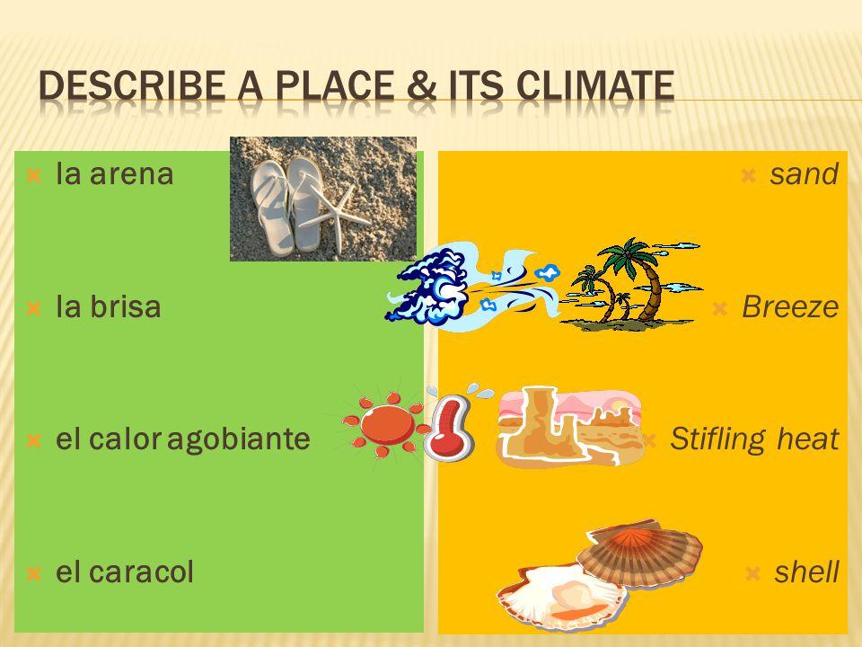  la arena  la brisa  el calor agobiante  el caracol  sand  Breeze  Stifling heat  shell