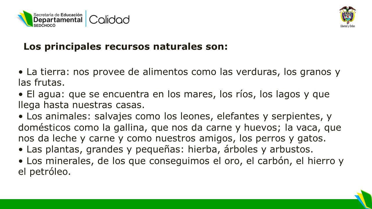 Los principales recursos naturales son: La tierra: nos provee de alimentos como las verduras, los granos y las frutas.