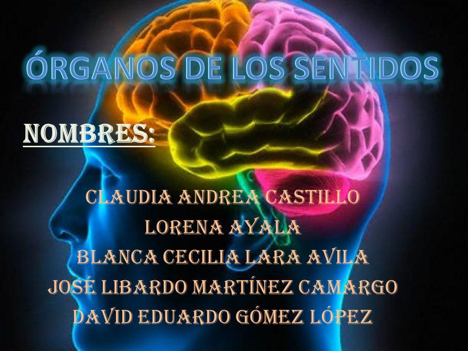 NOMBRES: CLAUDIA ANDREA CASTILLO LORENA AYALA BLANCA CECILIA LARA AVILA JOSÉ LIBARDO MARTÍNEZ CAMARGO DAVID EDUARDO GÓMEZ LÓPEZ