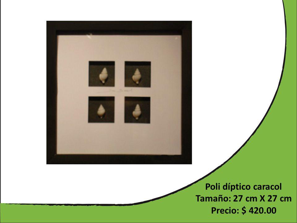 Poli díptico caracol Tamaño: 27 cm X 27 cm Precio: $ 420.00