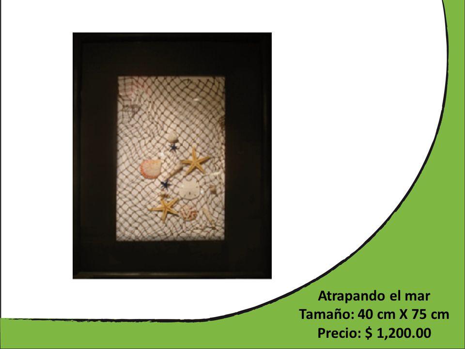 Atrapando el mar Tamaño: 40 cm X 75 cm Precio: $ 1,200.00