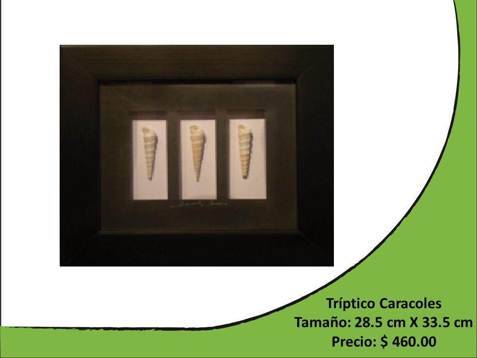 Tríptico Caracoles Tamaño: 28.5 cm X 33.5 cm Precio: $ 460.00
