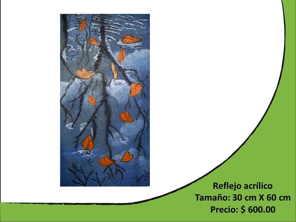 Reflejo acrílico Tamaño: 30 cm X 60 cm Precio: $ 600.00